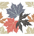autumn leaves pattern vector image