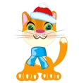 Cat in festive cloth vector image vector image