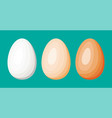 chicken eggs isolated on green background vector image