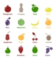 Fruits and berries icons set vector image vector image