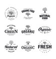 olive tree vintage old logo badge isolated on vector image vector image
