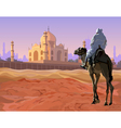 rider on a camel standing in the desert vector image