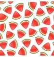 Seamless Background with Watermelon vector image vector image