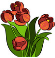 tulip flowers vector image vector image