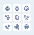 bacteria microbes and viruses icons set on white vector image vector image