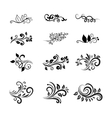 Calligraphic Floral Design Elements vector image