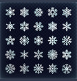 festive snowflakes set christmas holydays vector image vector image