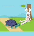 rabbit sleep under tree while tortoise run on road vector image