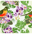 seamless texture tropical bird with orchid vector image vector image