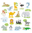 wild animals and sea creatures set with landscape vector image vector image