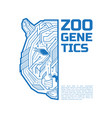zoo genetics logo a half a tiger or bear head vector image