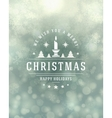 Christmas snowflakes and typography label design vector image