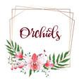 floral design geometric frame orchid eucalyptus vector image vector image