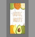 ambarella kiwano papaya melon avocado brochure vector image