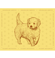 Dog Golden Retriever on a yellow ornamental backgr vector image vector image