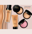 foundation and blush powder realistic vector image vector image