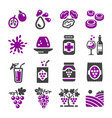 grape icon vector image vector image