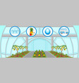 harvesting in greenhouse flat vector image vector image