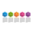 hexagon options infographics template with 8 vector image vector image