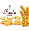 italian pasta background or poster with wheat vector image