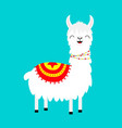 llama alpaca childish baby collection cute vector image