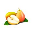 sweet fruit pears vector image