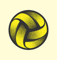 volleyball yellow symbol vector image vector image