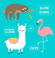 alpaca flamingo sloth set no drama llama slow vector image