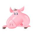 big pig face cartoon vector image vector image