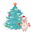 Cute pink pig near christmas tree