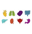internal organs icon set color outline style vector image vector image