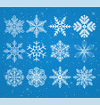 set of snowflakes on a snowy background with stars vector image