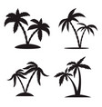 set silhouettes palm trees isolated on vector image vector image
