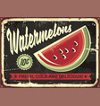 watermelons retro advertise vector image vector image
