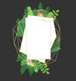 geometric botanical design frame vector image vector image