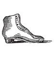 shoe foot vintage engraving vector image vector image