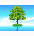 Tree in the water vector image vector image