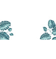 tropical elements design template panoramic vector image