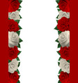card with roses vector image