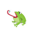 green frog eat insect on white cartoon vector image
