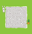 maze game with rabbit and carrot vector image vector image