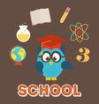 owls school vector image vector image