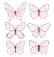pastel outline butterfly icons vector image