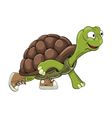 turtle sprinter vector image