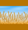 field of wheat landscape background vector image vector image