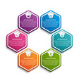 hexagon options infographics template vector image vector image