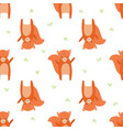 pattern squirrel vector image