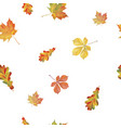 seamless pattern with different autumn leaves vector image