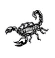 tattoo scorpion zodiac vector image