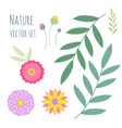 floral set collection with leaves and flowers for vector image